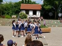 Sommerfest 2015_77